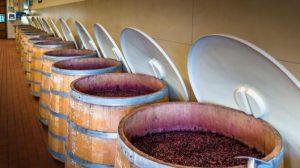 """▲""""ティネッロ""""と呼ばれる700Lのオークの発酵槽"""