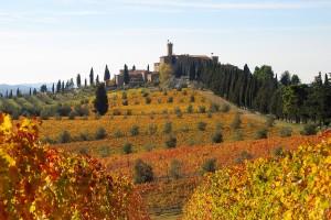 Castello Banfi Fall