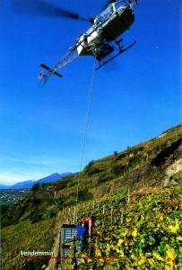 ヘリコプターと畑