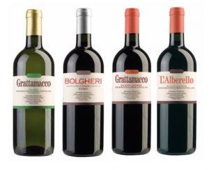 """▲グラッタマッコのワインはこの4品。右から二つめがフラッグシップの""""グラッタマッコ """"の赤"""